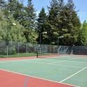 saddleback-2304-tennis-14